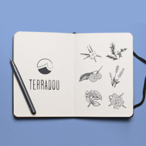 Terradou – charte graphique